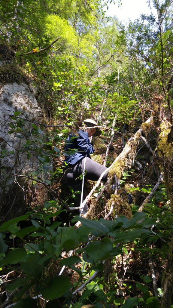 Janet descending the rope ladder